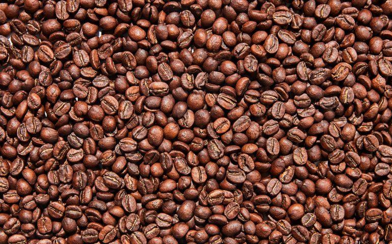 Coffee Roasters of Charleston
